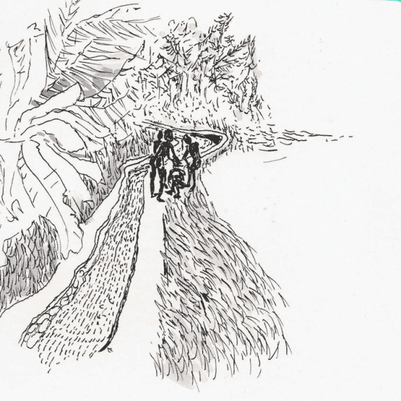 lavee illustratrice personal drawings